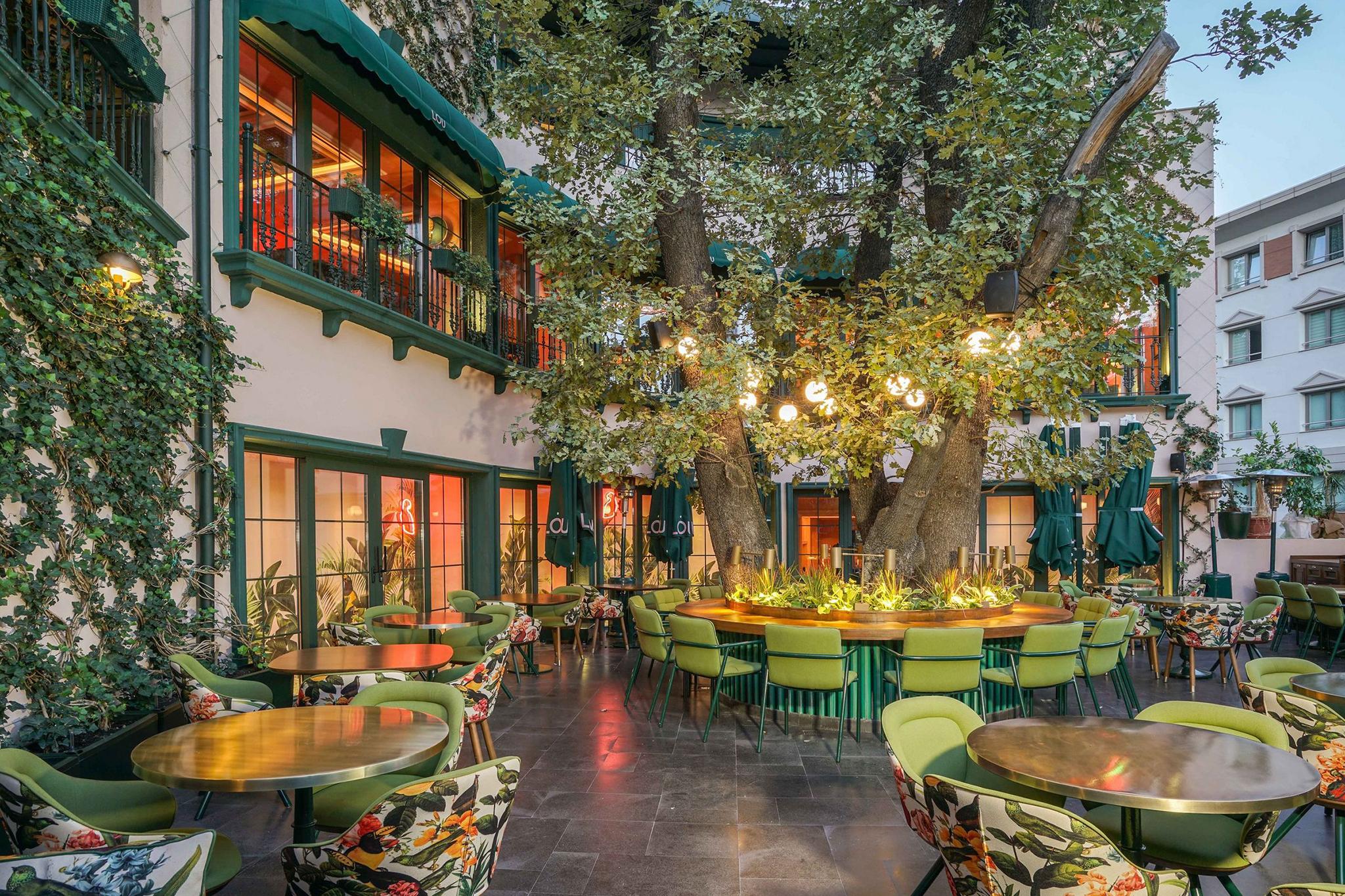 Thiết kế quán cafe sân vườn - phóng khoáng và ấn tượng