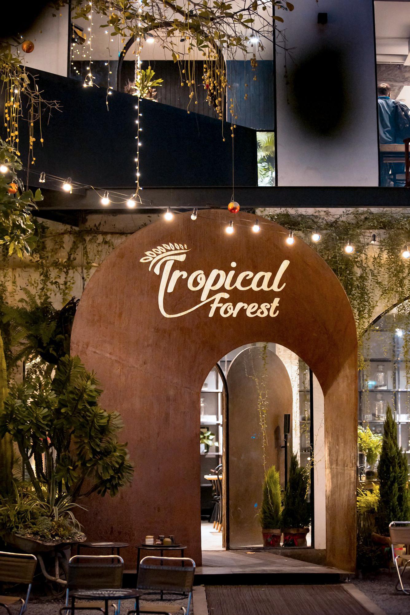 Mẫu thiết kế quán cafe Tropical Forest cơ sở 2