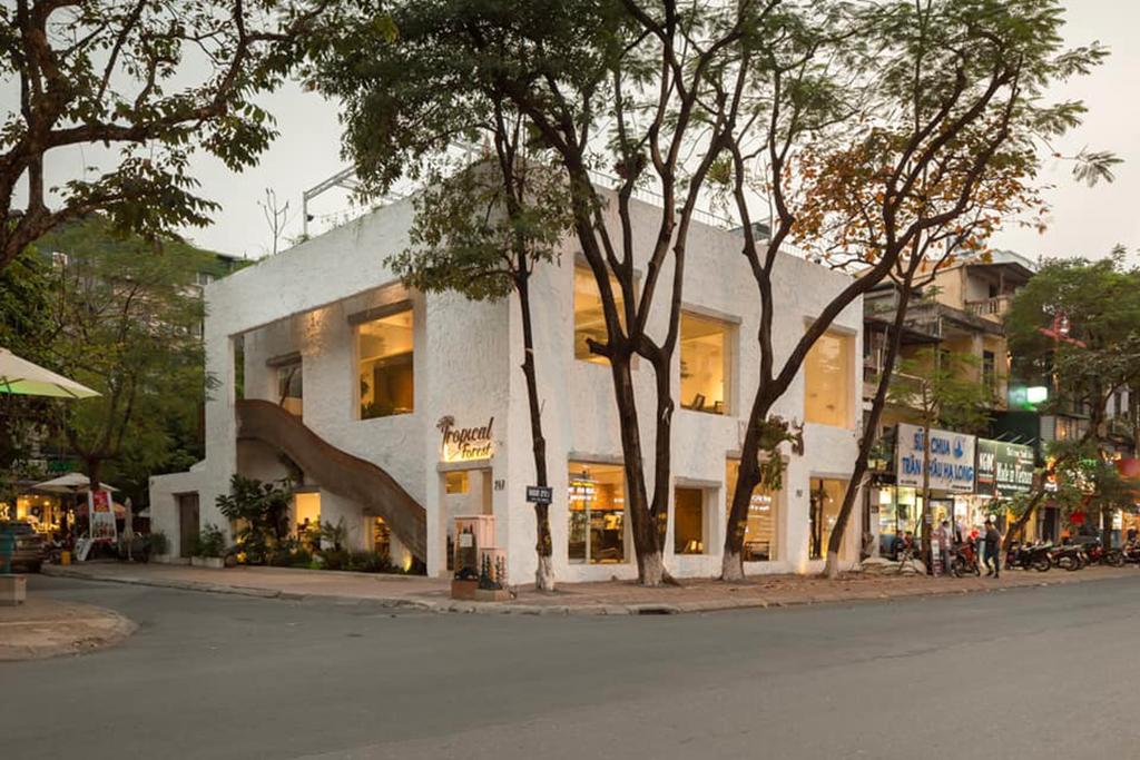 Mẫu thiết kế quán cafe Tropical Forest cơ sở 4