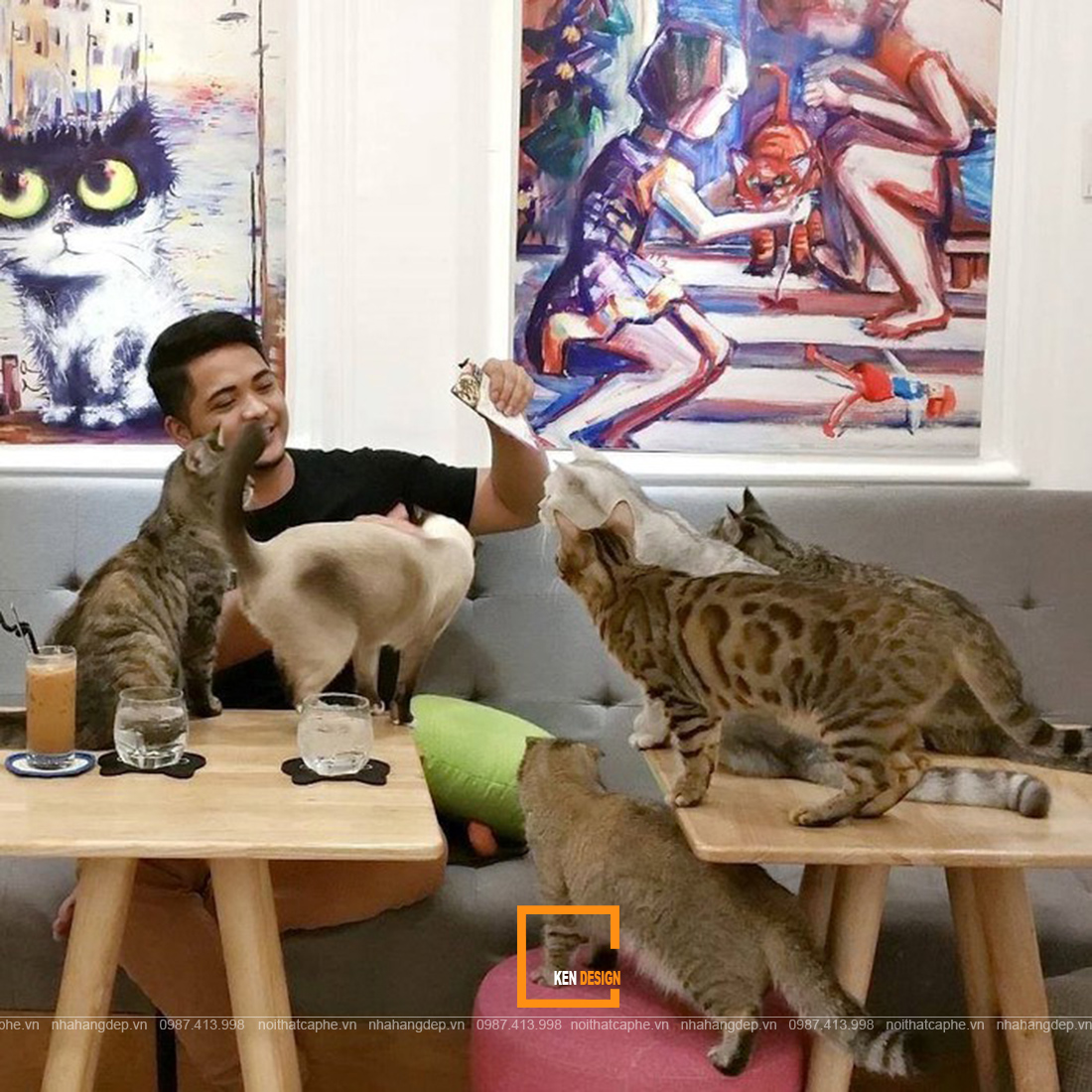 thiết kế quán cafe thú cưng