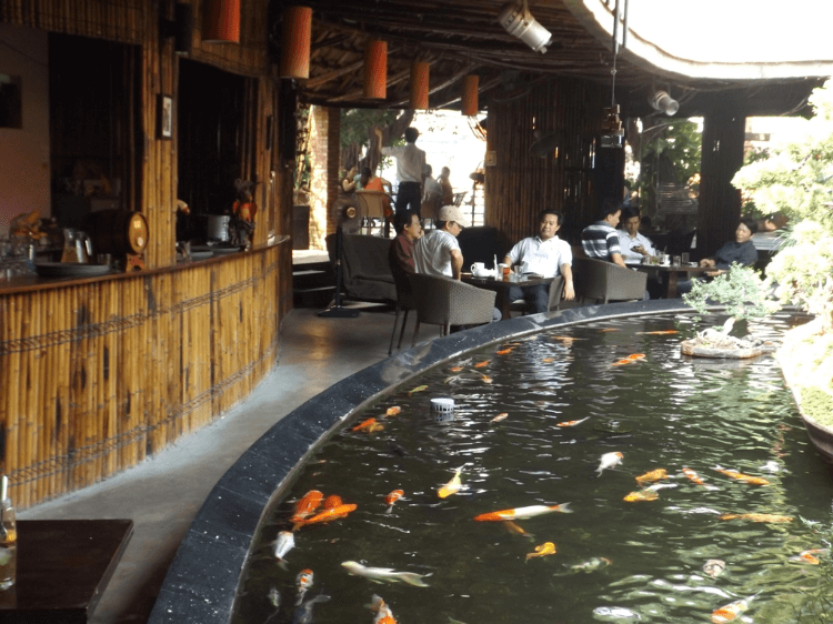 quán cafe cá koi ellip