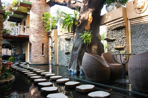 Quán cafe cá koi đẹp Oasis coffee